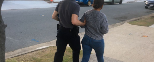 Queensland Woman Charged with Importing 14kg of Methamphetamine